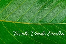 tavolo verde sicilia